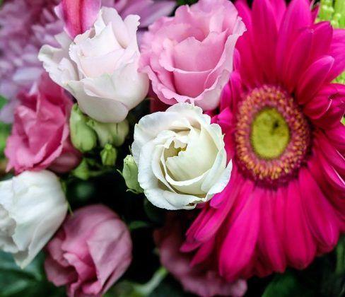 regalare fiori a una donna